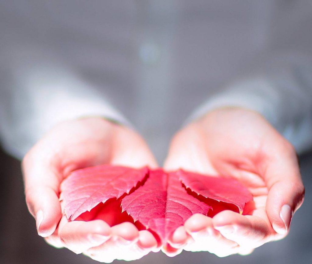 листья на ладонях