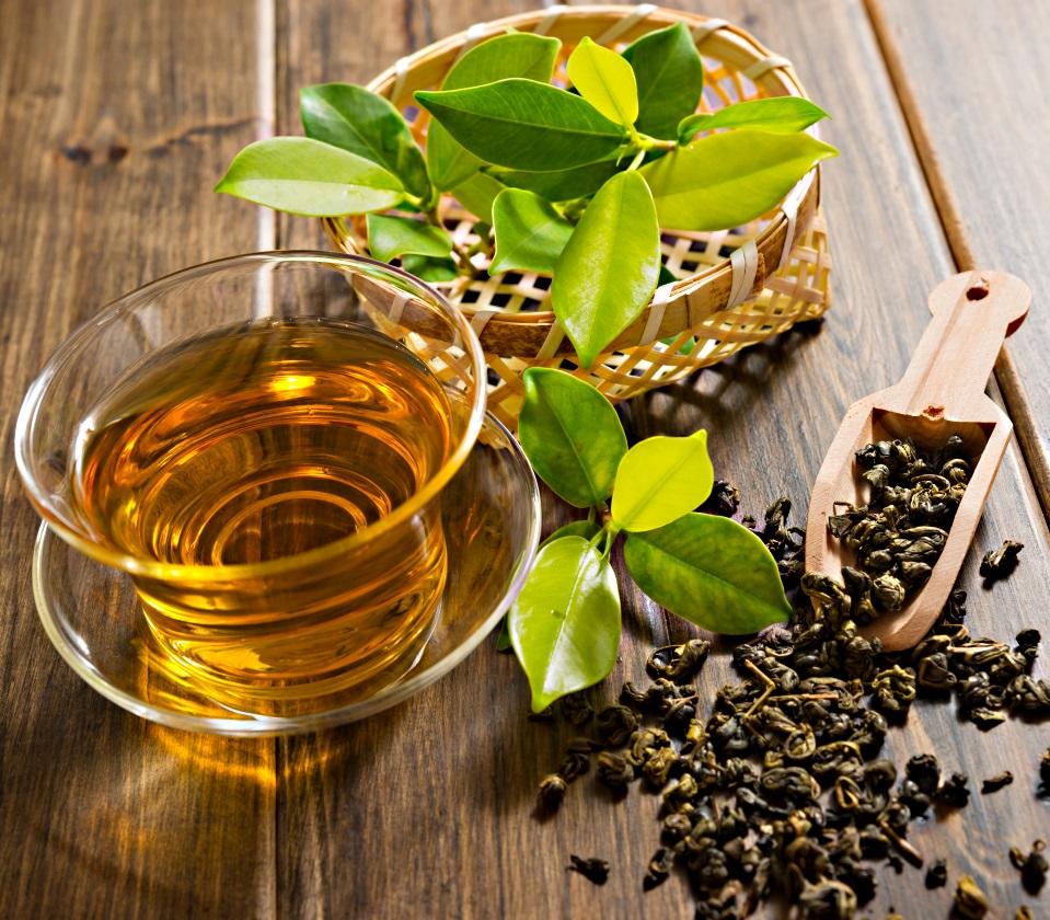 чай и сухие и свежие листья