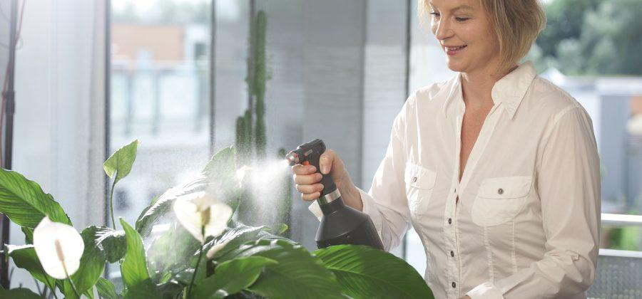 Лучшие способы увлажнить воздух дома