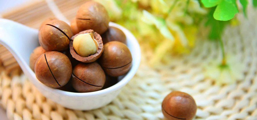 Почему полезно есть макадамские орехи?