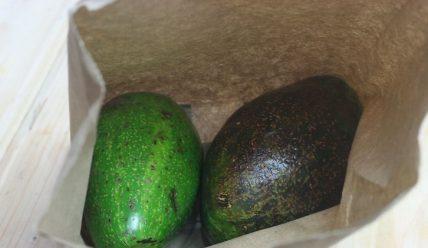 8 лучших способов хранить авокадо свежим