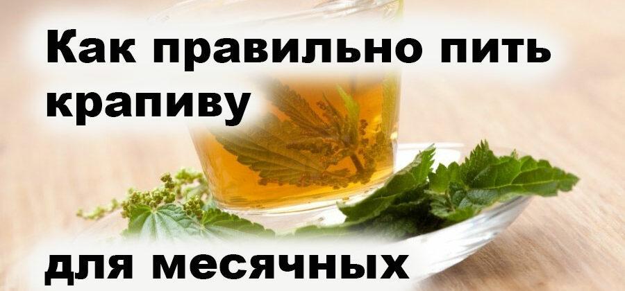 Как пить крапиву при месячных — 11 рецептов при задержке и обильной менструации