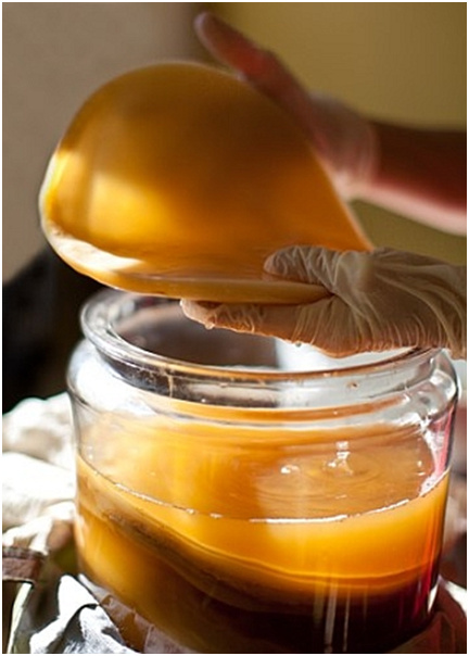 чайный гриб для кожи