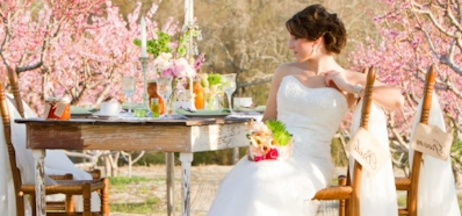 Свадьба в мае: приметы, отзывы и идеи